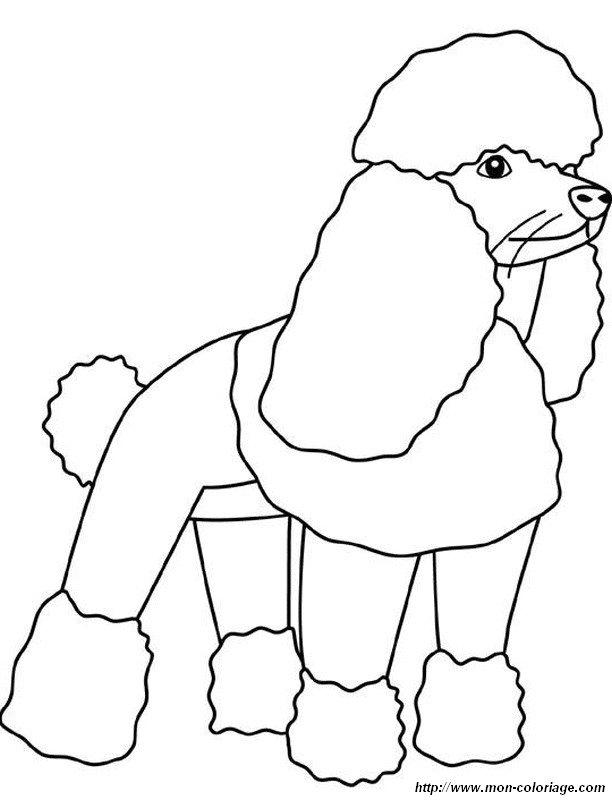 Colorare cane disegno barboncino for Cane disegno facile