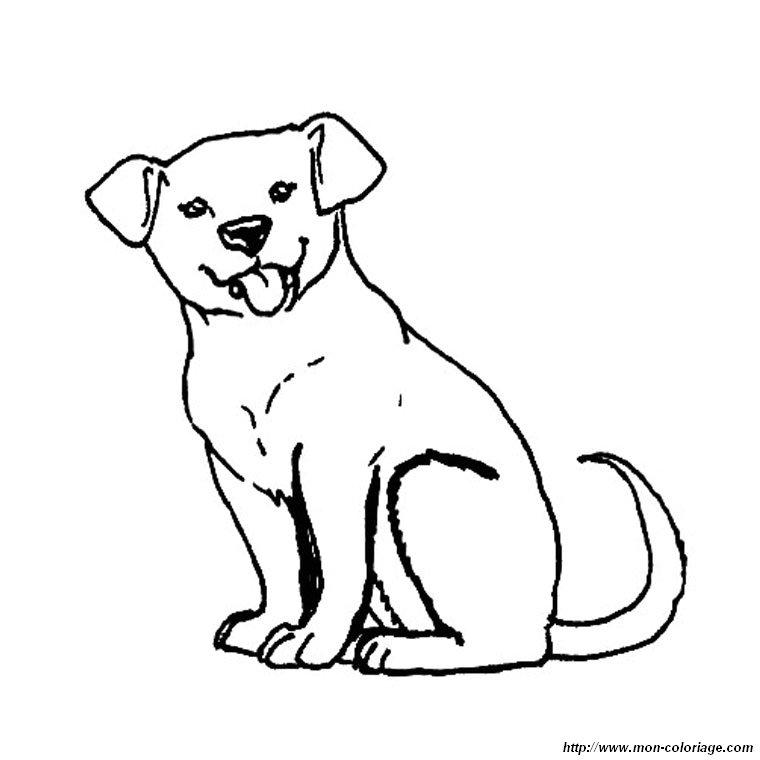 Colorare cane disegno cucciolo labrador - Cucciolo da colorare stampabili ...