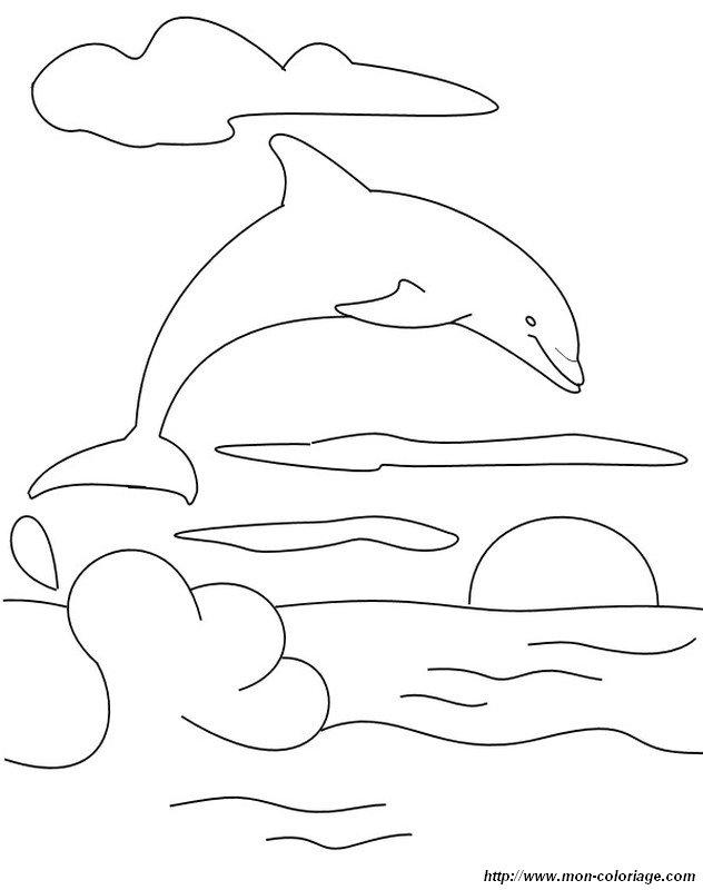 Delfini Da Stampare E Colorare.Colorare Delfino Disegno Sole E Delfino Che Salta