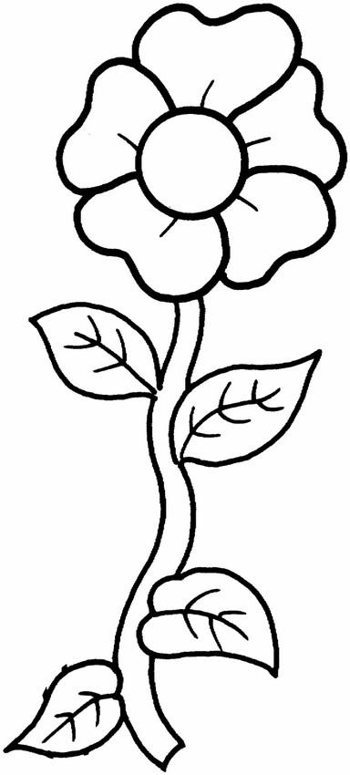 Colorare Fiore Disegno Facile Da Colorare
