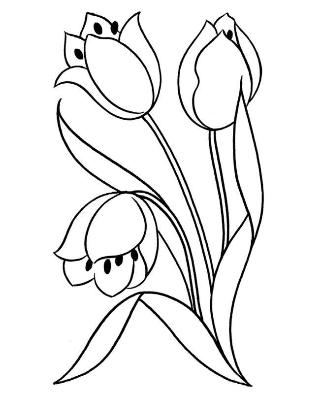 Colorare Fiore Disegno Tulipano Da Colorare Per Bambini