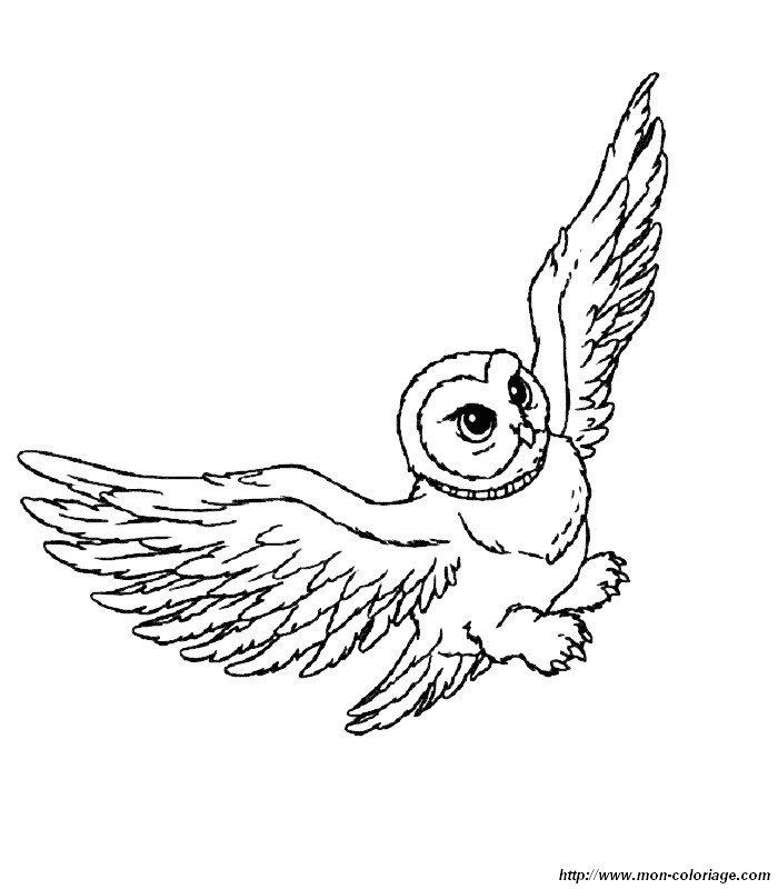 Colorare Harry Potter Disegno Harry Potter 2