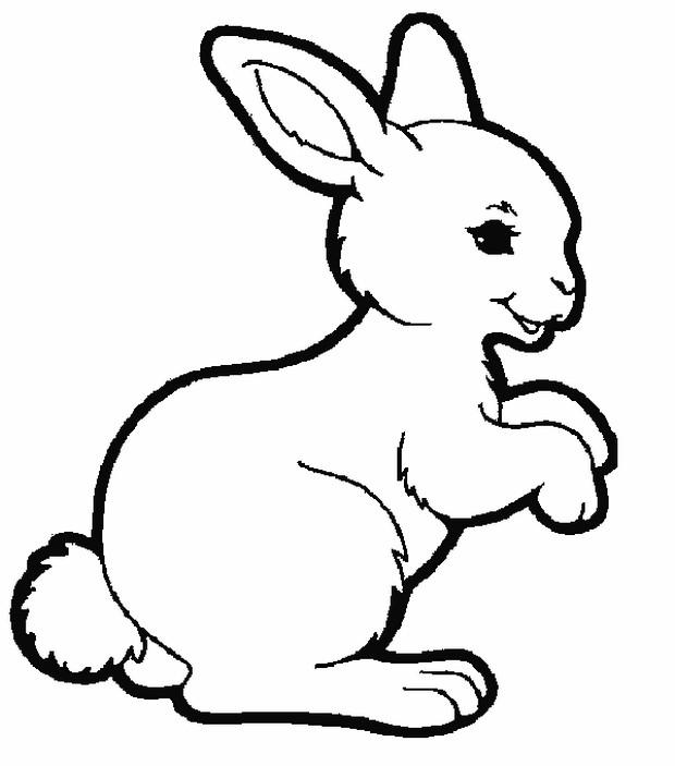 Colorare Coniglio Disegno Un Coniglio Sorridente
