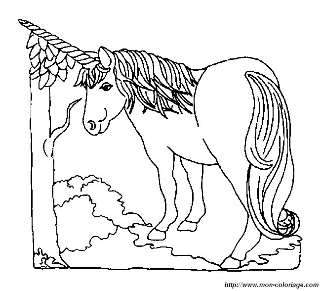 Colorare Unicorno Disegno 20 Unicorno