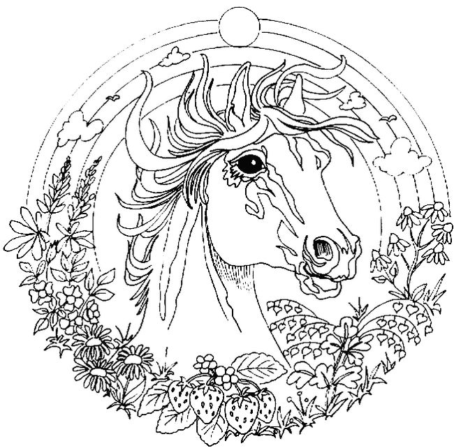 Colorare mandala disegno un bel cavallo da colorare for Disegni di cavalli da stampare