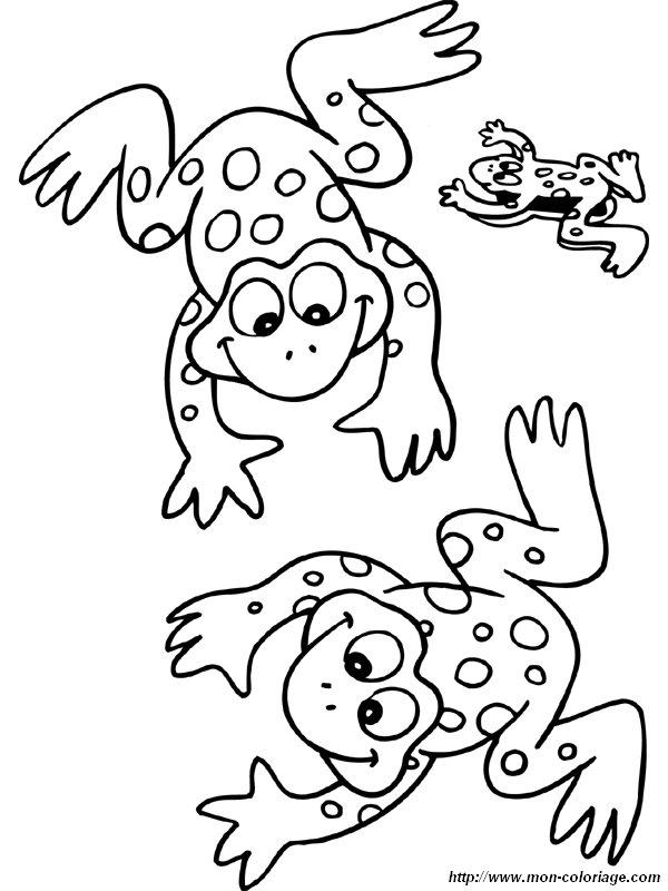 Colorare Disegni Da Ritagliare Disegno Rana