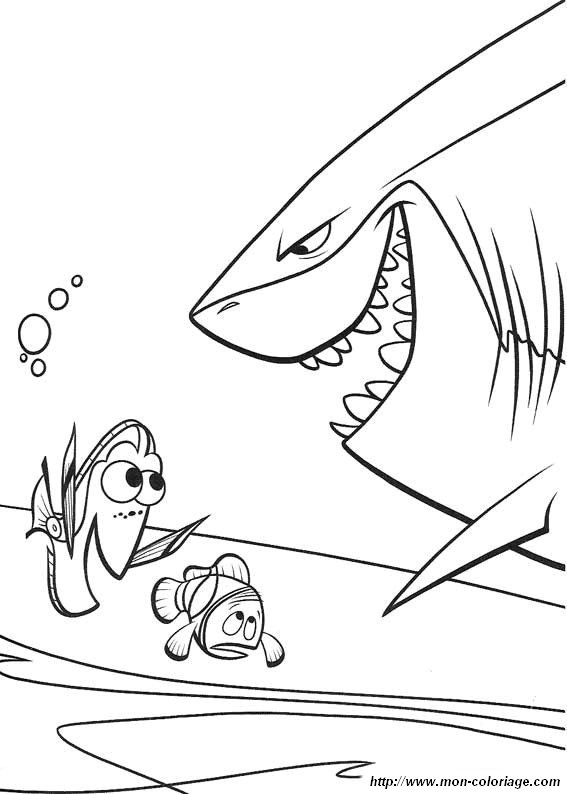 Colorare Alla Ricerca Di Nemo Disegno Colorare Nemo