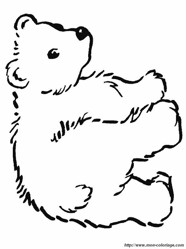 Colorare orso disegno un orso 4 - Dessin ours facile ...