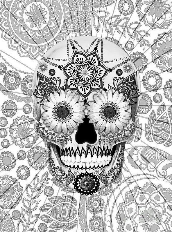 disegni da colorare x grandi