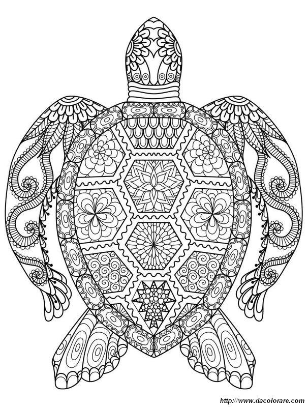 Colorare Per Adulti Disegno Una Tartaruga