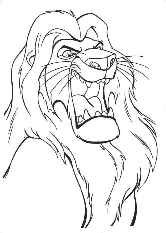 Il Re Leone 4