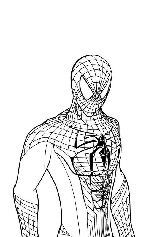Colorare spiderman disegno disegni da colorare spiderman for Disegni spiderman da colorare