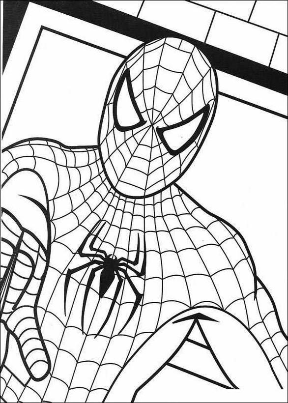 Colorare Spiderman, disegno L uomo ragno