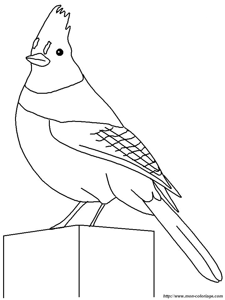 Do Mister Maker Colouring Pages Mister Maker Colouring Pages